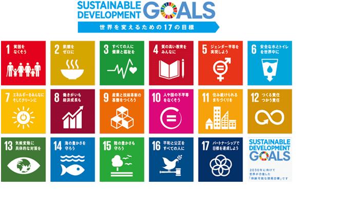 SDG picture